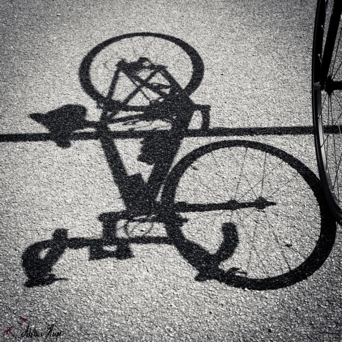 J'ai un p'tit vélo dans la tête